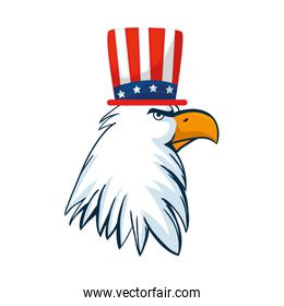 Isolated usa eagle with hat vector design