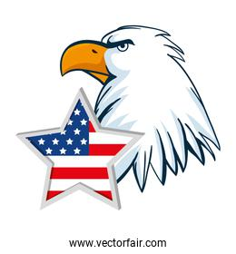 Isolated usa eagle and star vector design