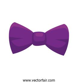Isolated male bow tie of purple color