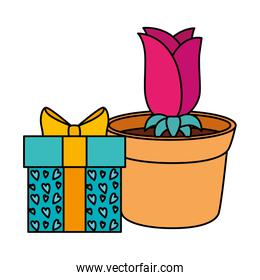 gift box with rose flower in pot plant isolated icon
