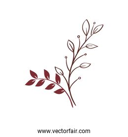 branches with leafs nature isolated icon