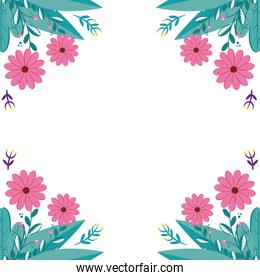 frame of flowers natural with leafs isolated icon