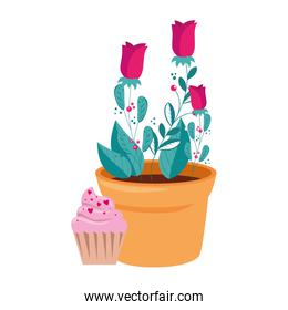 rose flower in pot plant with cupcake