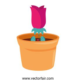 rose flower in pot plant isolated icon