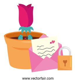 rose flower in pot plant with envelope and padlock