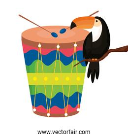 toucan animal exotic with drum isolated icon