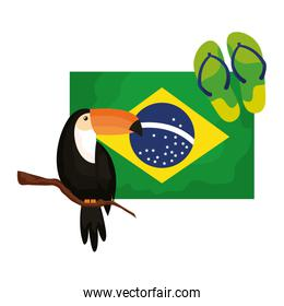 toucan and flip flops with flag brazil