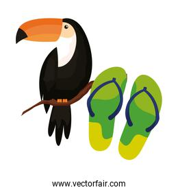 flip flops with toucan isolated icon