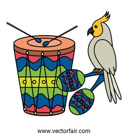 drum with parrot and maracas isolated icon