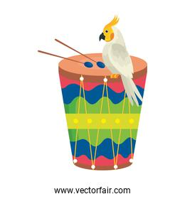 drum with parrot bird isolated icon