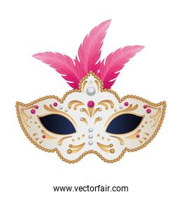 elegant mask with feathers isolated icon