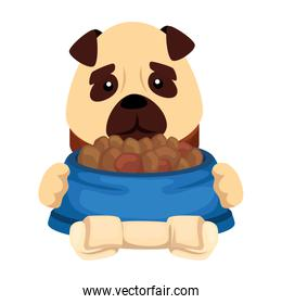 cute dog with dish food and bone isolated icon