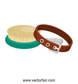 collar for dog with brush isolated icon