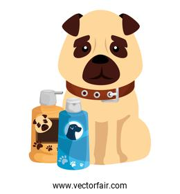 cute dog with care products isolated icons