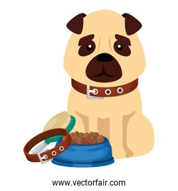 cute dog with dish food and icons