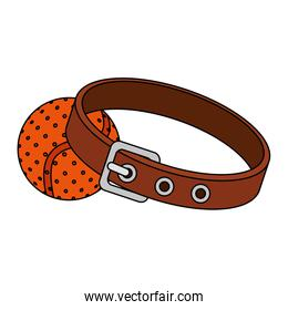 collar for dog with ball toy isolated icon