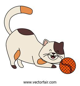 cute little cat with ball toy