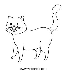 cute little cat animal line style icon