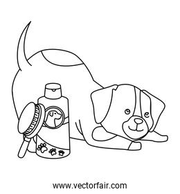 cute dog with bottle for care and brush line style icon
