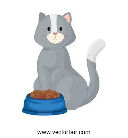 cute little cat with dish food isolated icon