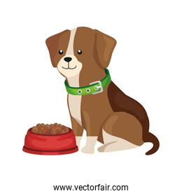 cute dog with dish food isolated icon