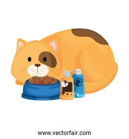 cute cat with dish food and icons for care