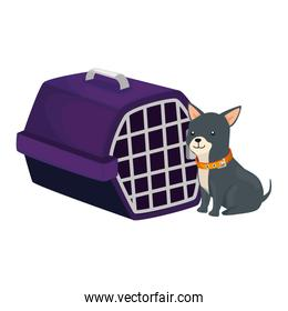 cute dog with carry box isolated icon