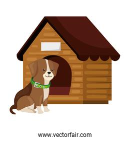 cute dog with wooden house isolated icon