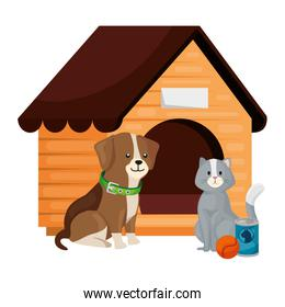 cute dog and cat with wooden house isolated icon