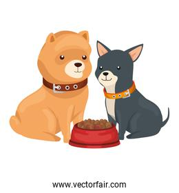 cute dogs with dish food isolated icon