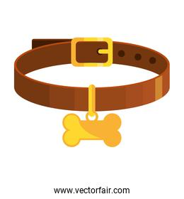 collar for dog with bone isolated icon