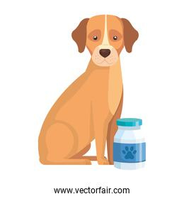 cute dog animal with bottle isolated icon