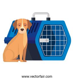 cute dog with pet carry box isolated icon