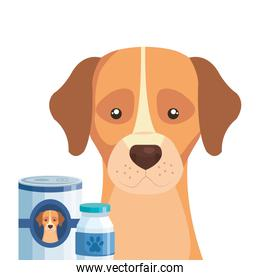 cute dog with bottle medicine and food