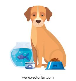 cute dog with round glass fish bowl and icons