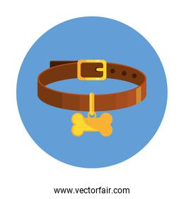 collar for dog with bone in frame circular isolated icon