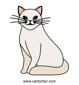 cute cat white isolated icon