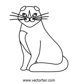 cute cat animal line style icon