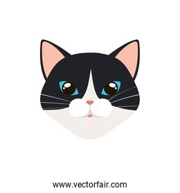 face of cat black and white isolated icon