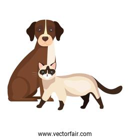 cute dog with cat isolated icons