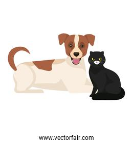 cute dog with cat black isolated icons