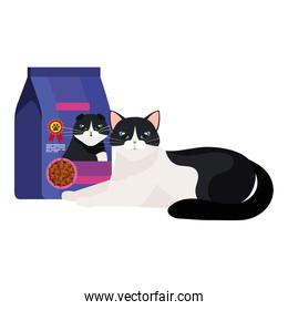 cute cat black and white with food in bag isolated icon