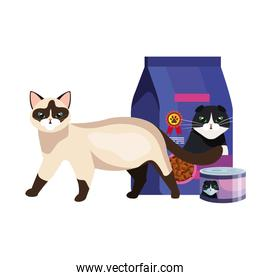 cute cat with food in bag and can isolated icon