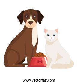 dog with cat and dish food isolated icon