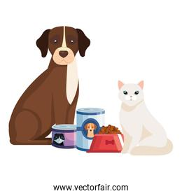 cat and dog with food for animals