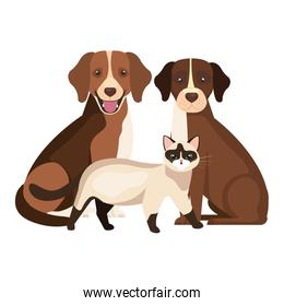 group of dogs with cat isolated icons