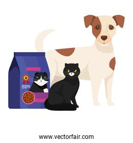 cat and dog with bag food
