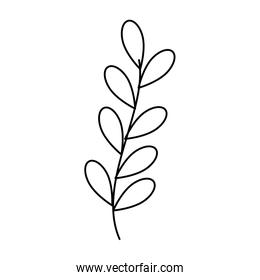 branch with leafs line style