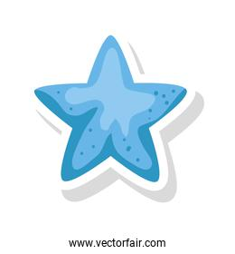 cute star decoration isolated icon