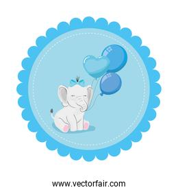 cute elephant with balloons helium in lace frame